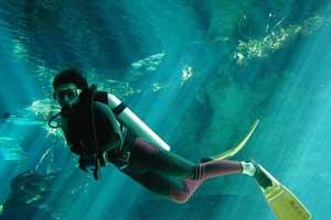 Diving-di-Bali