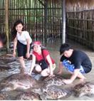 Pulau Penyu Bali123
